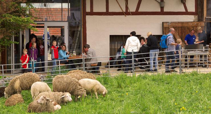 Anfang Mai feierte die Hopfenburg ihr zweites Hoffest. Rund 1200 Besucher bummelten über das Gelände.