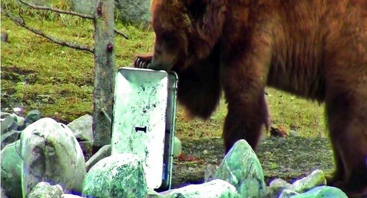 Bärentest