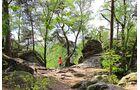Bei Ibbenbüren locken die Dörenther Klippen zur Kletterpartie im Wald.