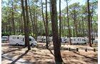 Camping Plage de Petit Nice