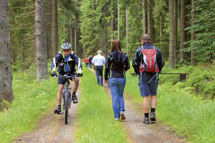 Reise-Tipp: Böhmerwald