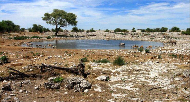 Selbstfahrer-Touren durch Namibia